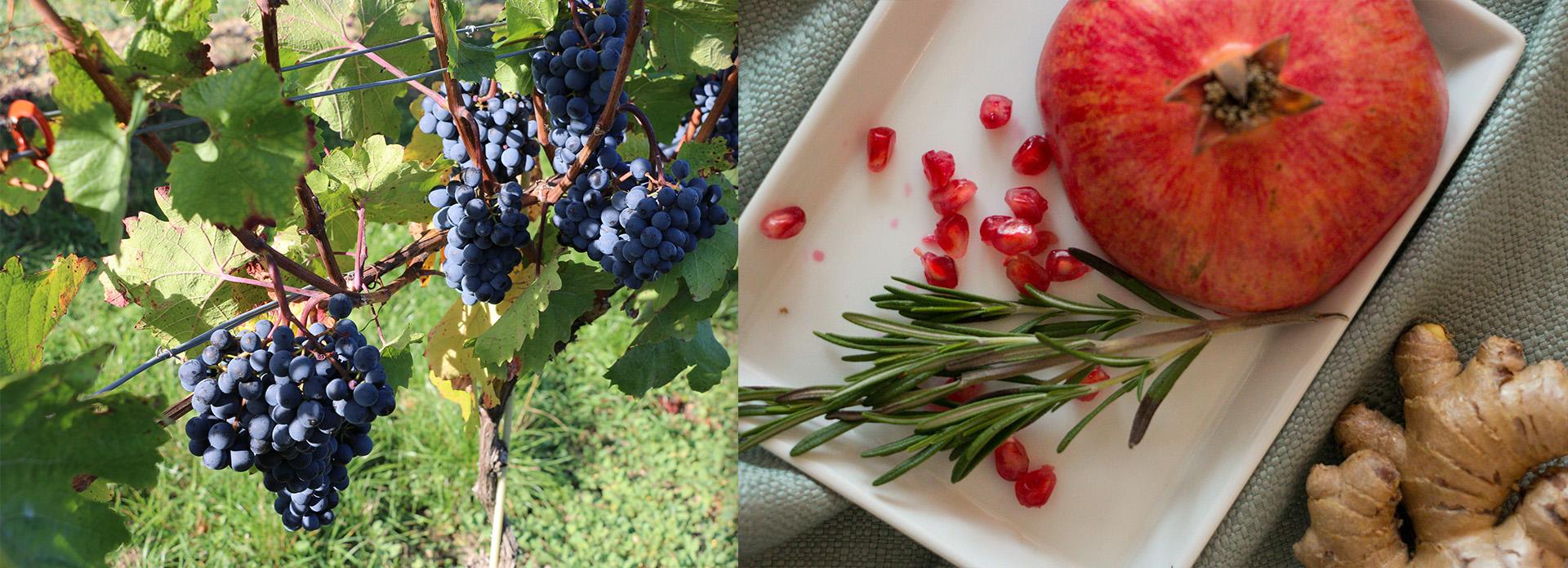 Weintrauben rot Granatapfel Liebe