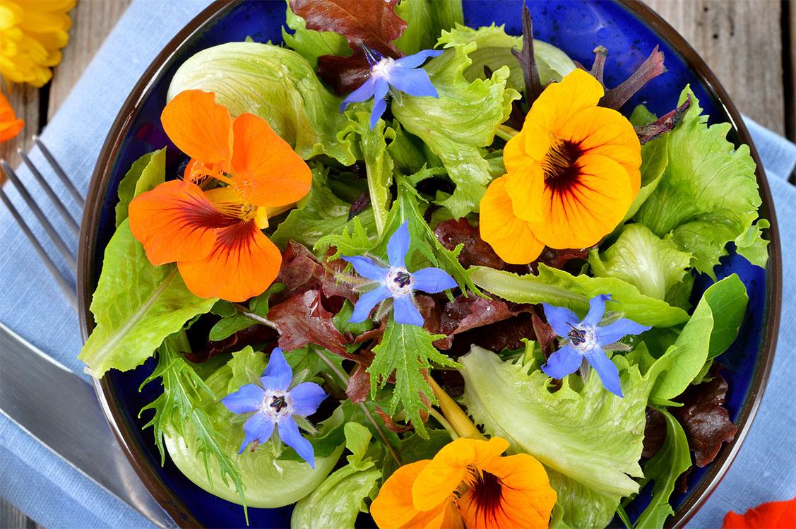 Essbare Blümchen Salat