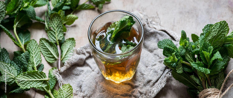 kühlende Lebensmittel - Minze - Tee