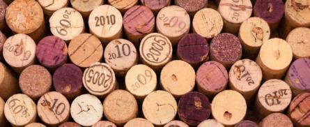 Die etwas andere Weinregion - Bild