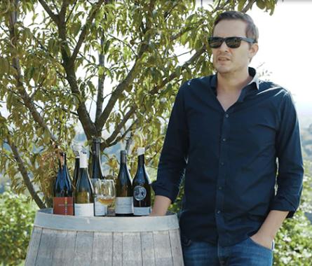 Über Weintrends & Anbauweisen - Bild