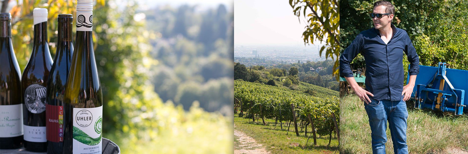 leo_kiem_beitragsbild Weintrends