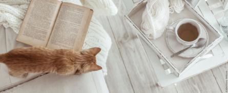 Essen & Bücher - Bild