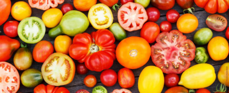 Tomaten - 10 österreichische Sorten, die du lieben wirst - Bild