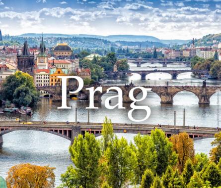 Foodtrip nach Prag - Bild
