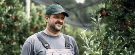 Zu Gast beim steirischen Apfelbauern - Bild