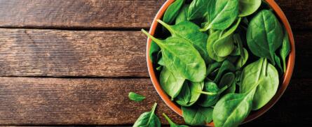 Spinat – 9 Fakten über das grüne Wunder-Gemüse - Bild