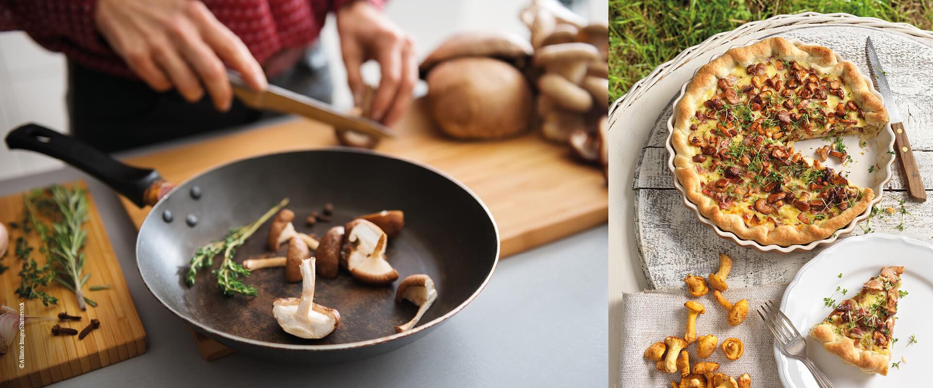 Pilze_Wissenswertes_zubereiten