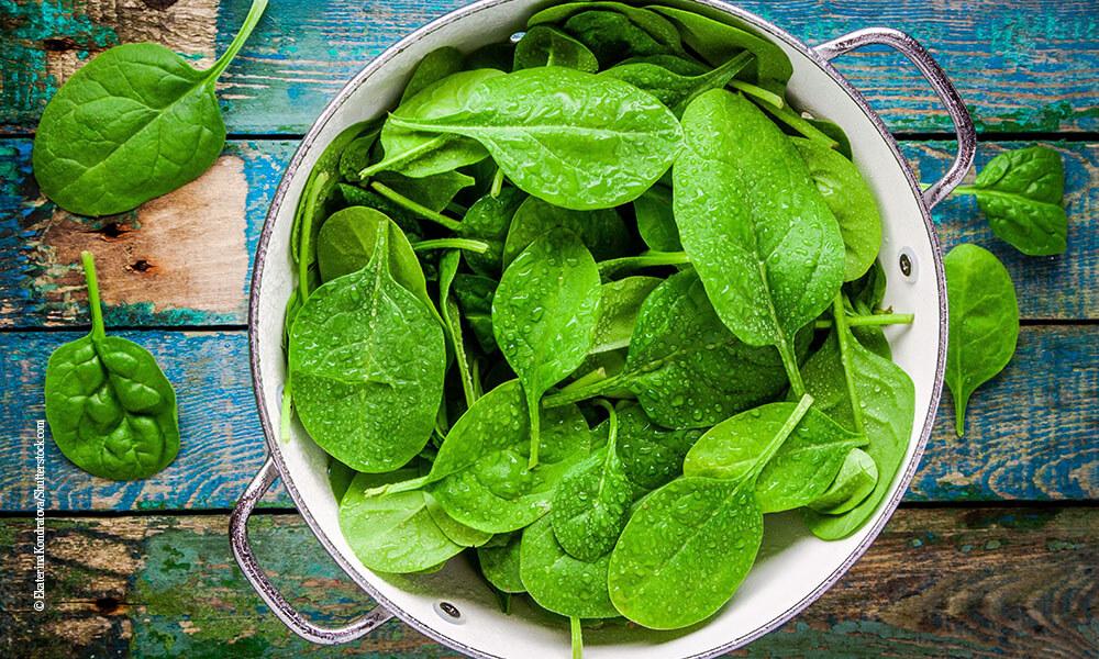 kühlende Lebensmittel - Spinat