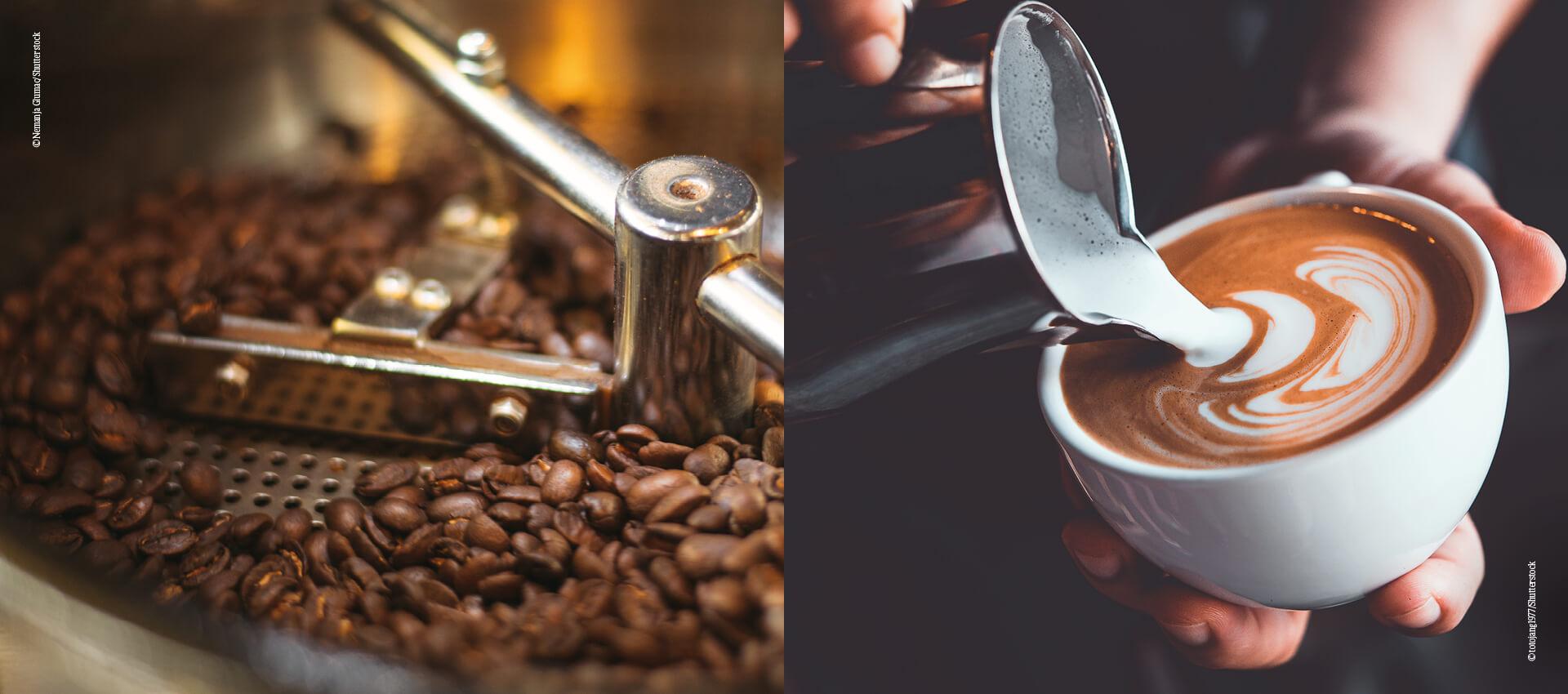 Kaffee_Röstung_Milchschaum