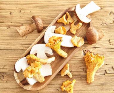 Herbstliche Pilzrezepte
