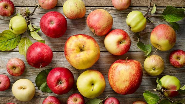 Apfel_Querkochen